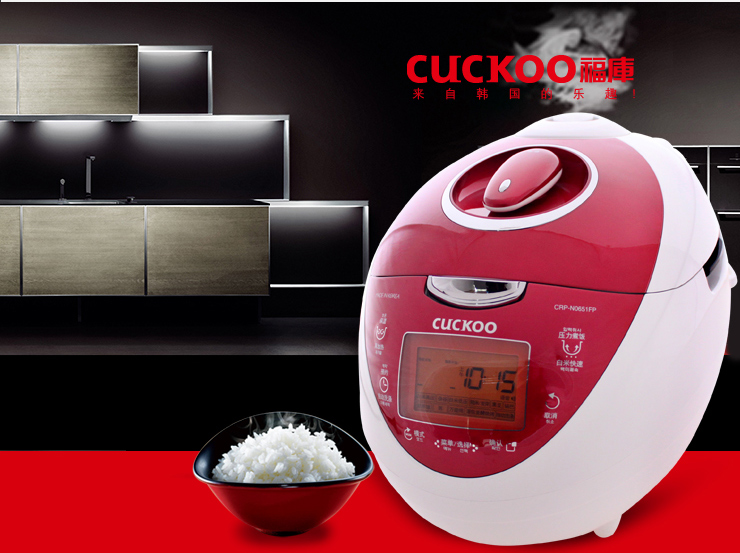 Krups 5cup rice cooker rk7009